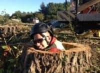 træstub K S treecare