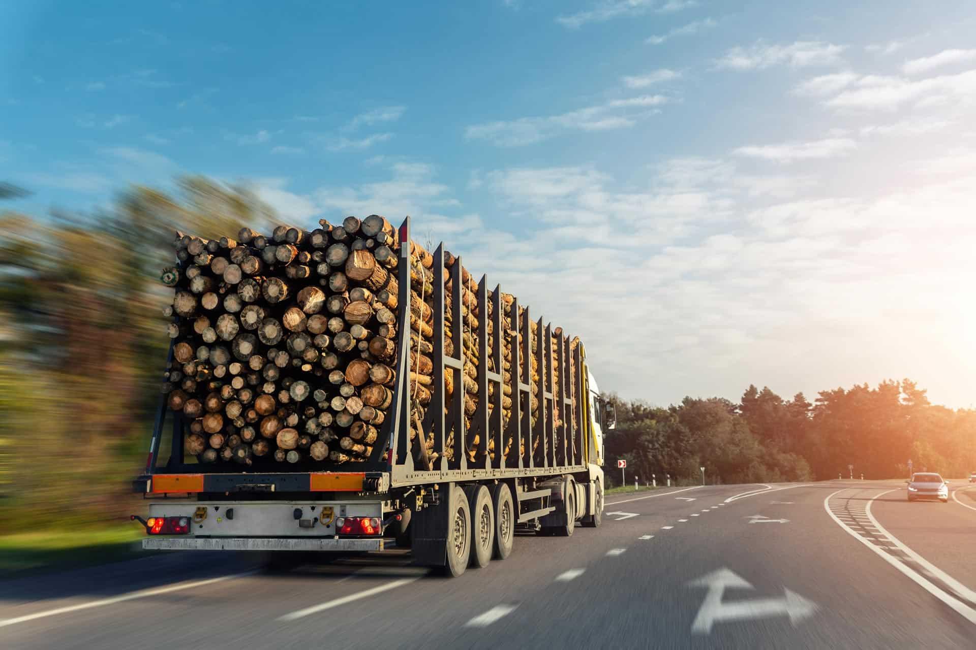 vognmandskørsel træstammer