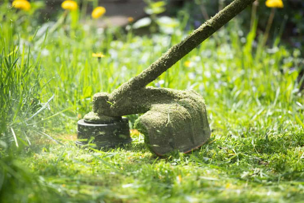 græs trimning