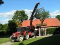 træflytning ved ejendom
